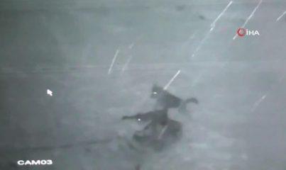 Köye inen kurt sürüsü köpeği parçaladığı anlar kameralara yansıdı