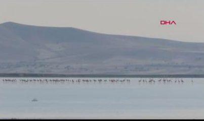 Kuruyan Seyfe Gölü'nde su seviyesi yüzde 20'ye ulaştı