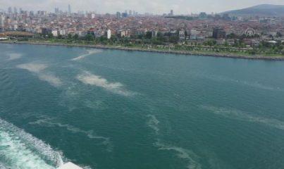 İSTANBUL - DRONE - Deniz salyası Anadolu Yakası'nda bazı bölgelerde görülmeye devam ediyor
